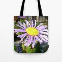 Close Up of A Violet Aster Flower Spring Bloom  Tote Bag