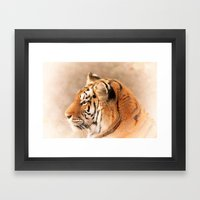 Amur Tiger Framed Art Print