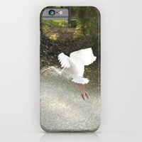 White Ibis On Takeoff iPhone 6 Slim Case