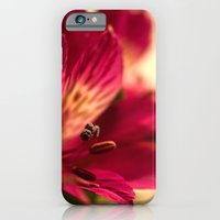 iPhone & iPod Case featuring {lily the pink} by Paul Smith