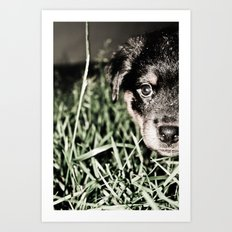 ROTTIE LOVE Art Print
