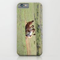 iPhone & iPod Case featuring Rolling Horse by Ria Pi