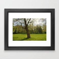 sefton park part 1 Framed Art Print