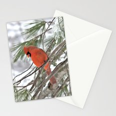 Snow Globe Cardinal (square) Stationery Cards