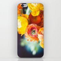 Ranuculus iPhone & iPod Skin