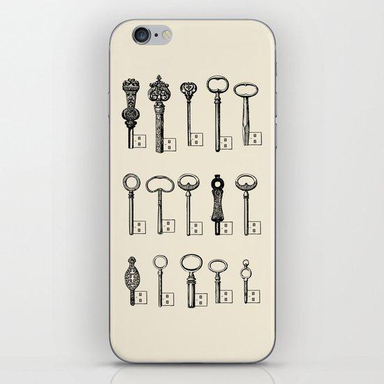 Usb Keys iPhone & iPod Skin
