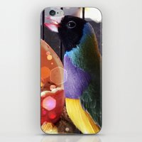 BİRD iPhone & iPod Skin