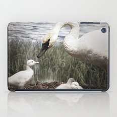 Tom Feiler Swan and her Cygnets iPad Case