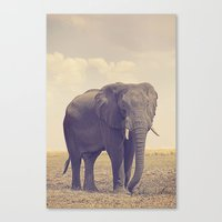 The Biggest Elephant In … Canvas Print