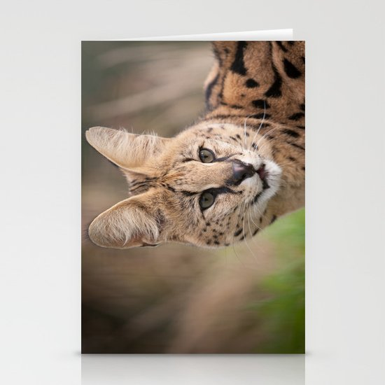 Serval Cat Stationery Card