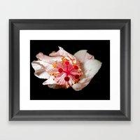 Explosion Of Light Framed Art Print