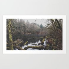 Hidden Pond Art Print