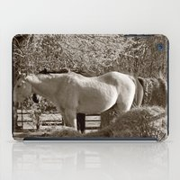 Country iPad Case