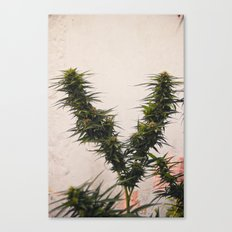 The V Canvas Print