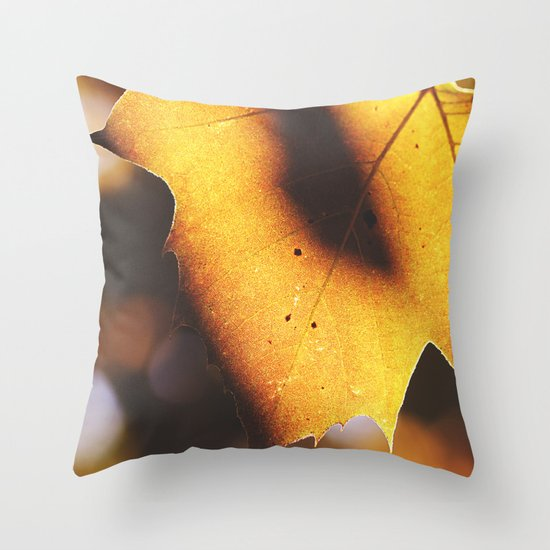The Inevitable Shift Throw Pillow