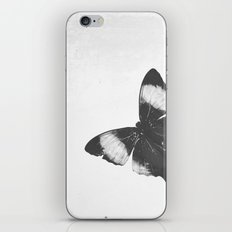 Lepidoptera iPhone & iPod Skin
