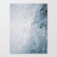 THE BUBBLE NET Canvas Print