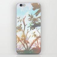 Living In The Sun iPhone & iPod Skin
