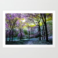 Find Your Terabithia Art Print