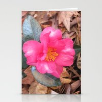 Pink Camellia Stationery Cards