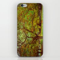 Chestnut Walk iPhone & iPod Skin