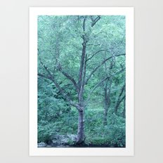 Fairy Tale Tree Art Print