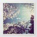 Spring Ray. Canvas Print