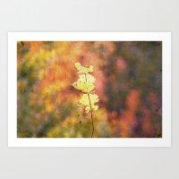 Seasonal Closeup - Autum… Art Print