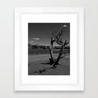 Desert Shadows Framed Art Print