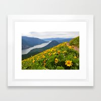 Dog Mountain Framed Art Print