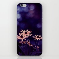 Black Eyed Susan iPhone & iPod Skin