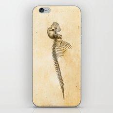 LIMINAL BEING n36 iPhone & iPod Skin