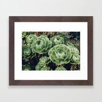 Succulent - Part II Framed Art Print
