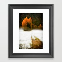 Pines In The Snow Framed Art Print