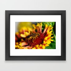 It's a bee's life Framed Art Print