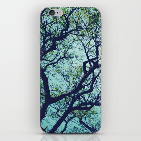 Rain Tree iPhone & iPod Skin