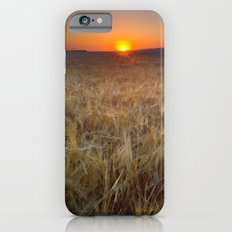 Color fields at sunset Slim Case iPhone 6s