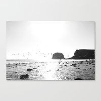 black and white big sur Canvas Print