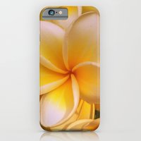 iPhone & iPod Case featuring Frangipane by Giorgia Giorgi