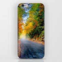 Autumn Road iPhone & iPod Skin