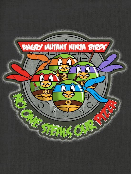 Angry Mutant Ninja Birds Art Print