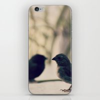 Invisible mirror iPhone & iPod Skin