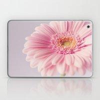 Pretty Pastel Gerbera  Laptop & iPad Skin