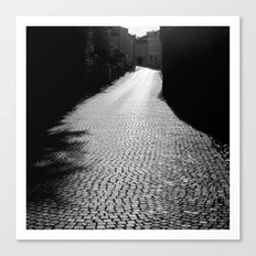 The alley by the wall Canvas Print