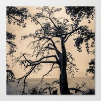 A Conversation With Afte… Canvas Print