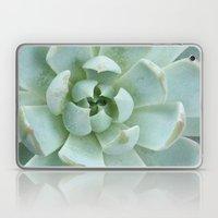 Succulent Love Laptop & iPad Skin