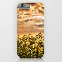 Approaching iPhone 6 Slim Case