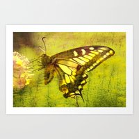 Abstract Of A Butterfly Art Print