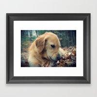 Sweet Dog Framed Art Print