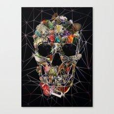 Fragile Skull Canvas Print